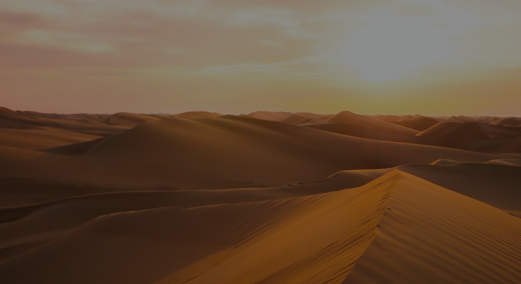 Amazing desert sunset. Beautiful Arabian desert with warm colors. Colorful contours of sand dunes at...