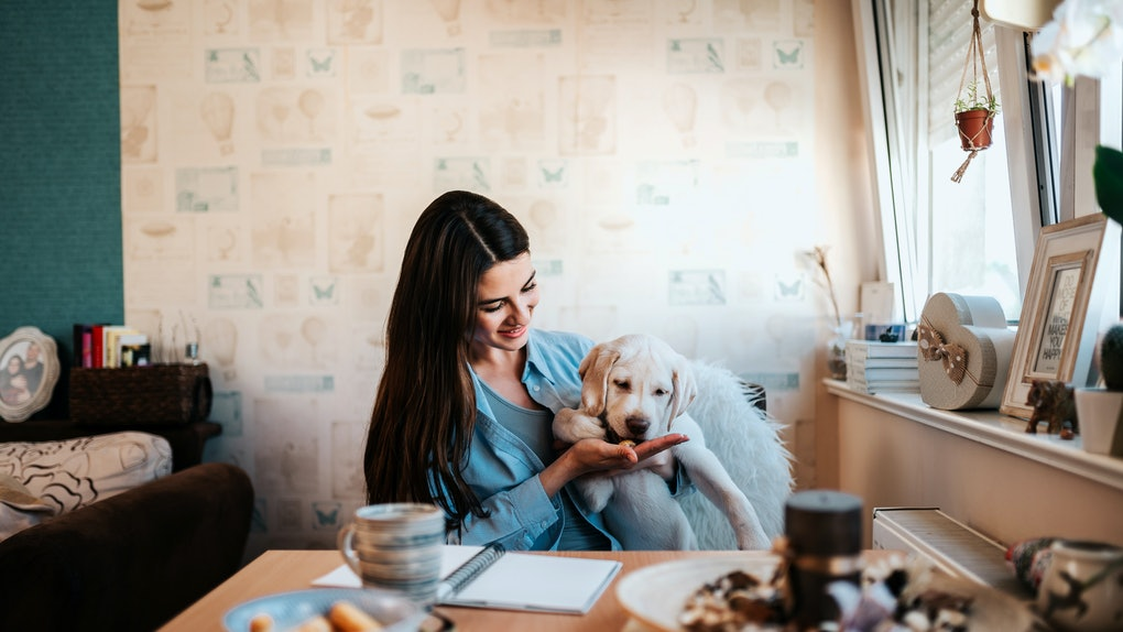 A brunette woman smiles while giving her dog a treat at the table in her kitchen.