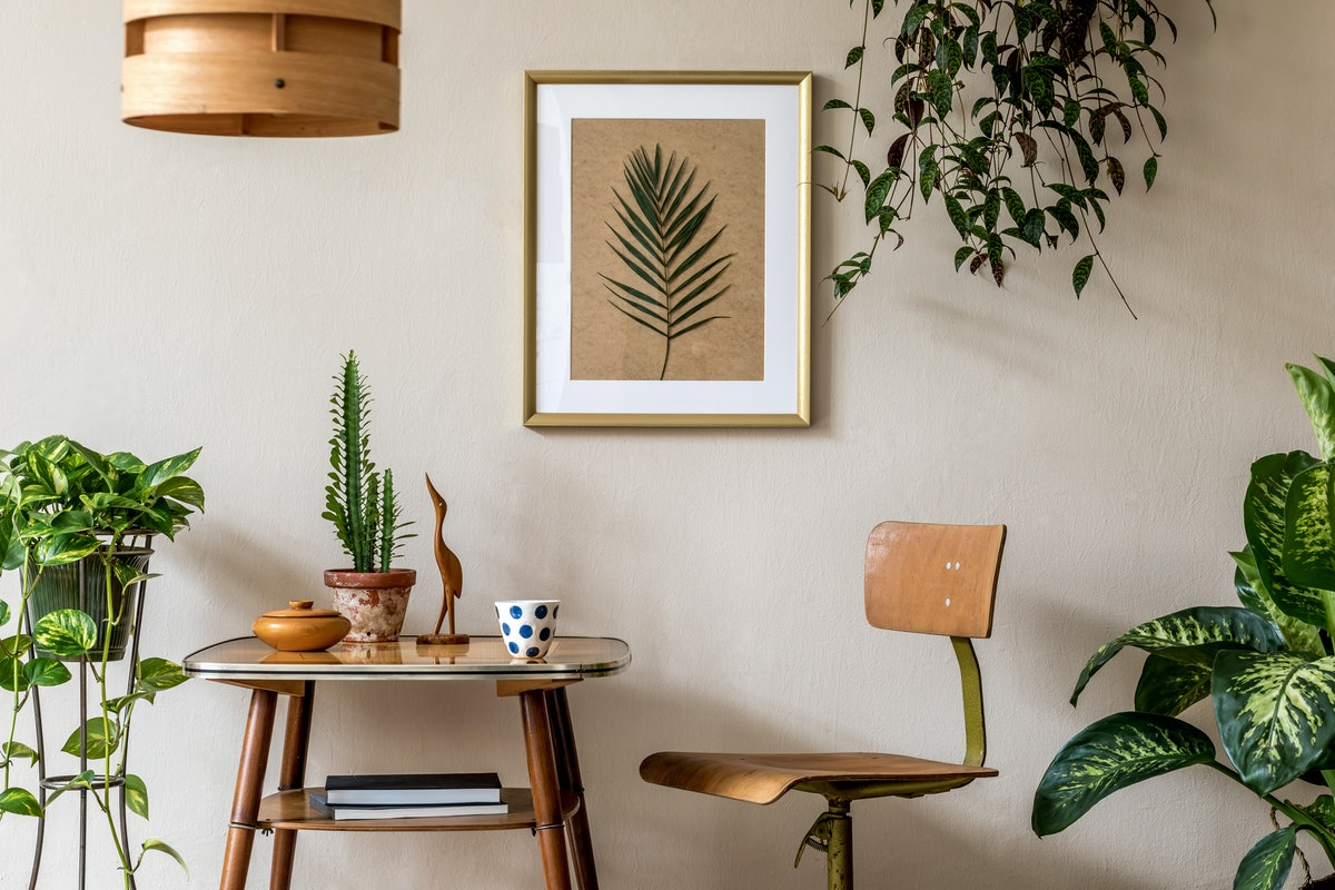 Retro interior design of living room with stylish vintage chair and table, plants, cacti, personal a...