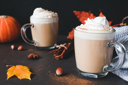 Hot Chocolate with whipped cream and cinnamon or Pumpkin Spice Latte with cream in mug on dark background. Horizontal. Autumn comfort food