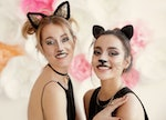 Beautiful young women with cat makeup and ears at party
