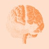 Black brain engraving drawing front view isolated on yellow orange background