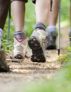 group of man and women during hiking excursion in woods, walking in a queue along a path. Low section view. Best hiking boots and shoes.
