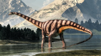 diplodocus in front of mountains illustration