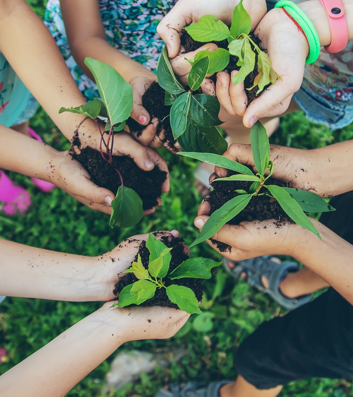children plant plants together in their hands. Selective focus. nature.