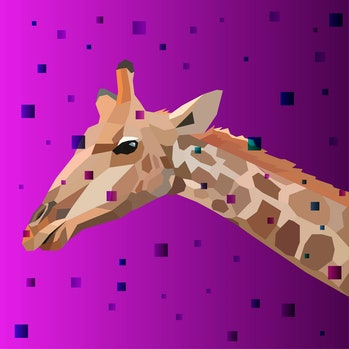 Colorful vector giraffe. Abstract stylish vector.