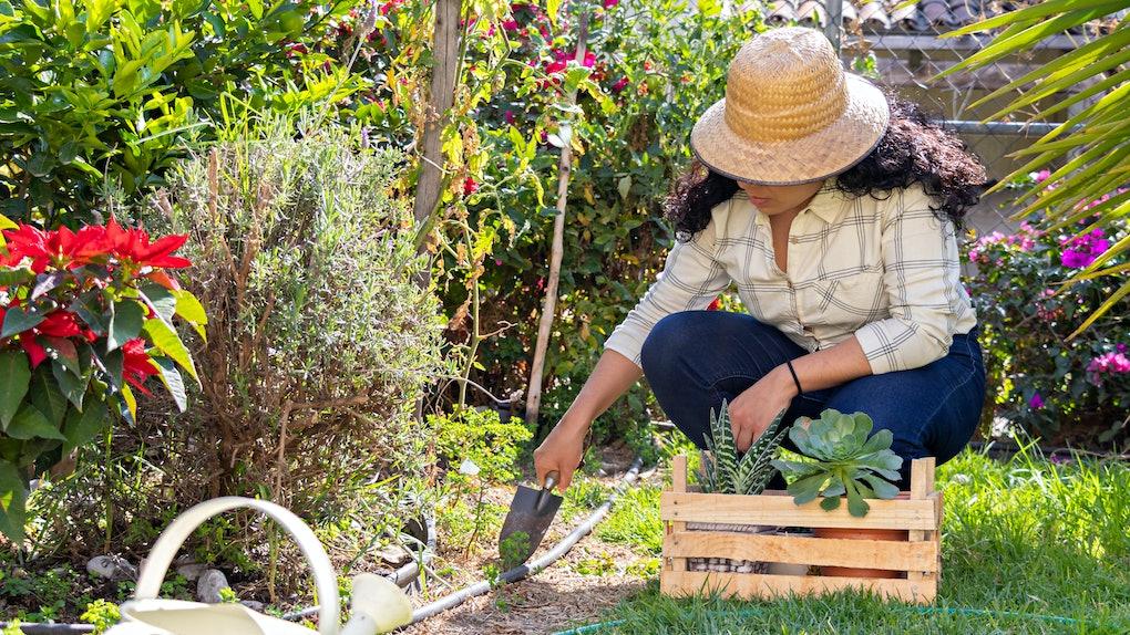 best hats for gardening amazon