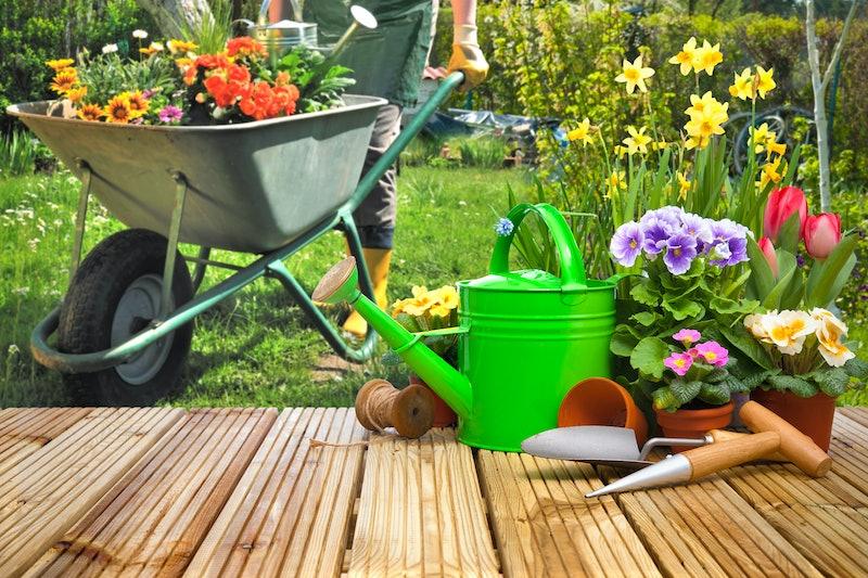 best gardening tools amazon