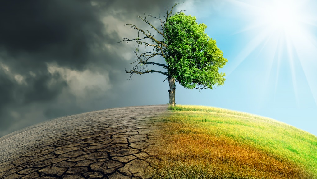 climate change withered earth