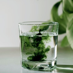 People on TikTok are saying that drinking chlorophyll is clearing their acne. Bustle asked experts to weigh in.