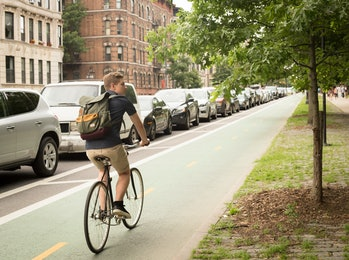 Back view of modern hipster man riding bike on bike lane, photographed in Brooklyn NY in July 2017