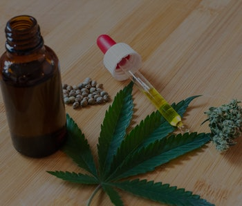 Cannabis oil, seeds and flower placed around weed leaf