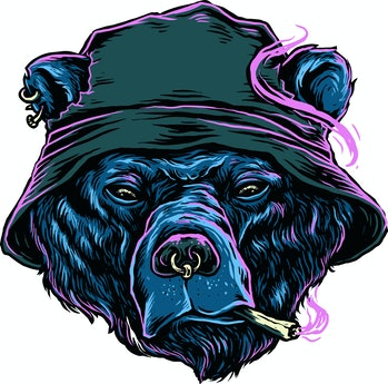 Blue bear smoke weed Illustration With bucket hat