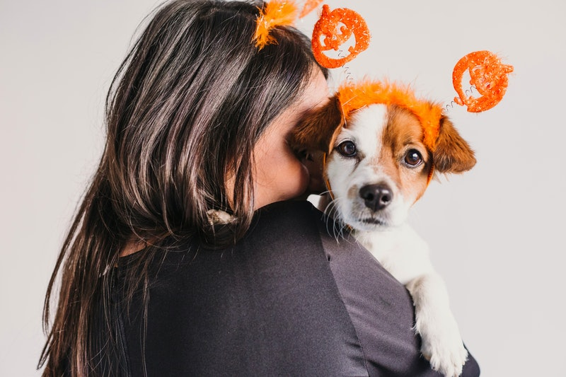 Halloween costumes with dog and owner