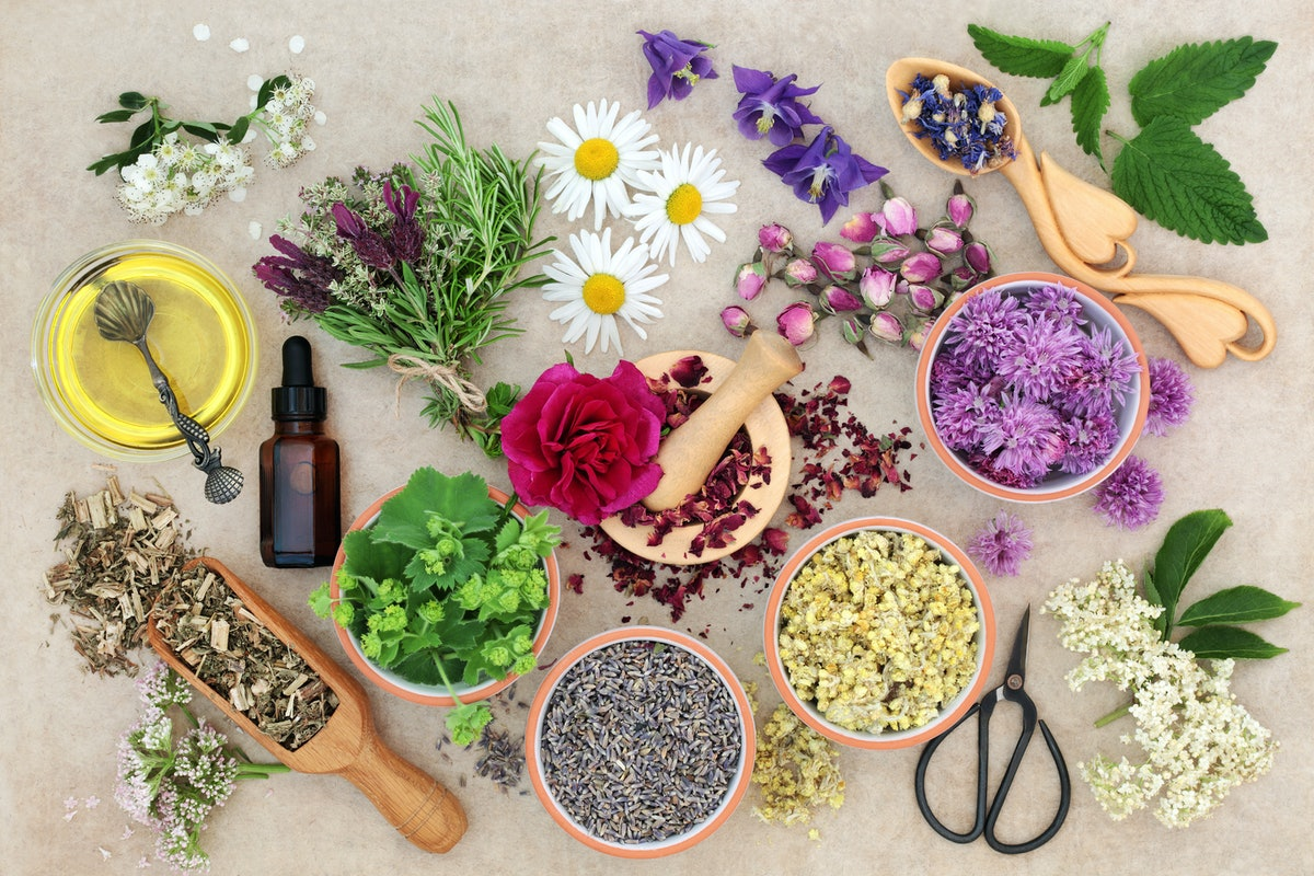 Natural herbal medicine with fresh herbs and flowers, aromatherapy essential oil, mortar with pestle...