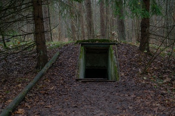 Entrance to underground military bunker in the forest.