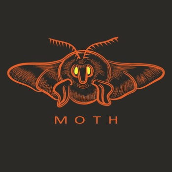 Vector illustration of moth in terracotta, yellow colors. Perfect for logos. Hand drawn engraving st...