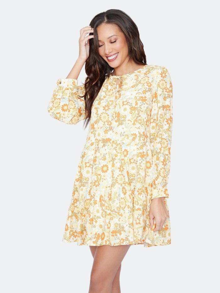 Prairie Rose Mini Dress: image 1