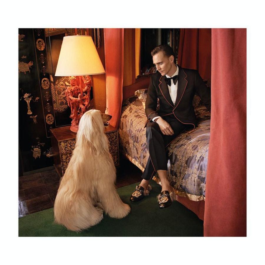 Tom Hiddleston for Gucci Cruise