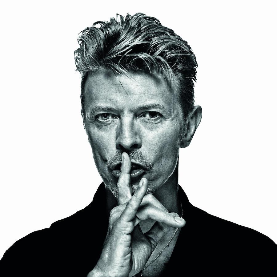 Gavin Evans, Bowie (c) Gavin Evans.jpg