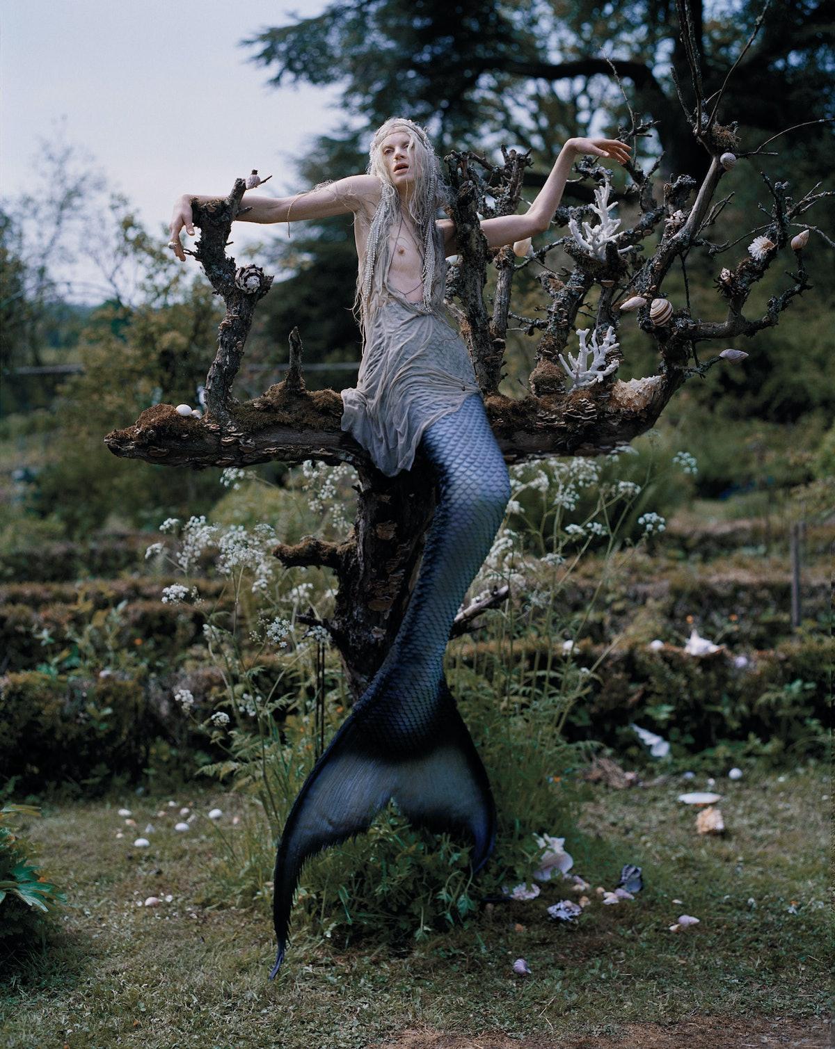 TW_Mermaid_R08F18.jpg