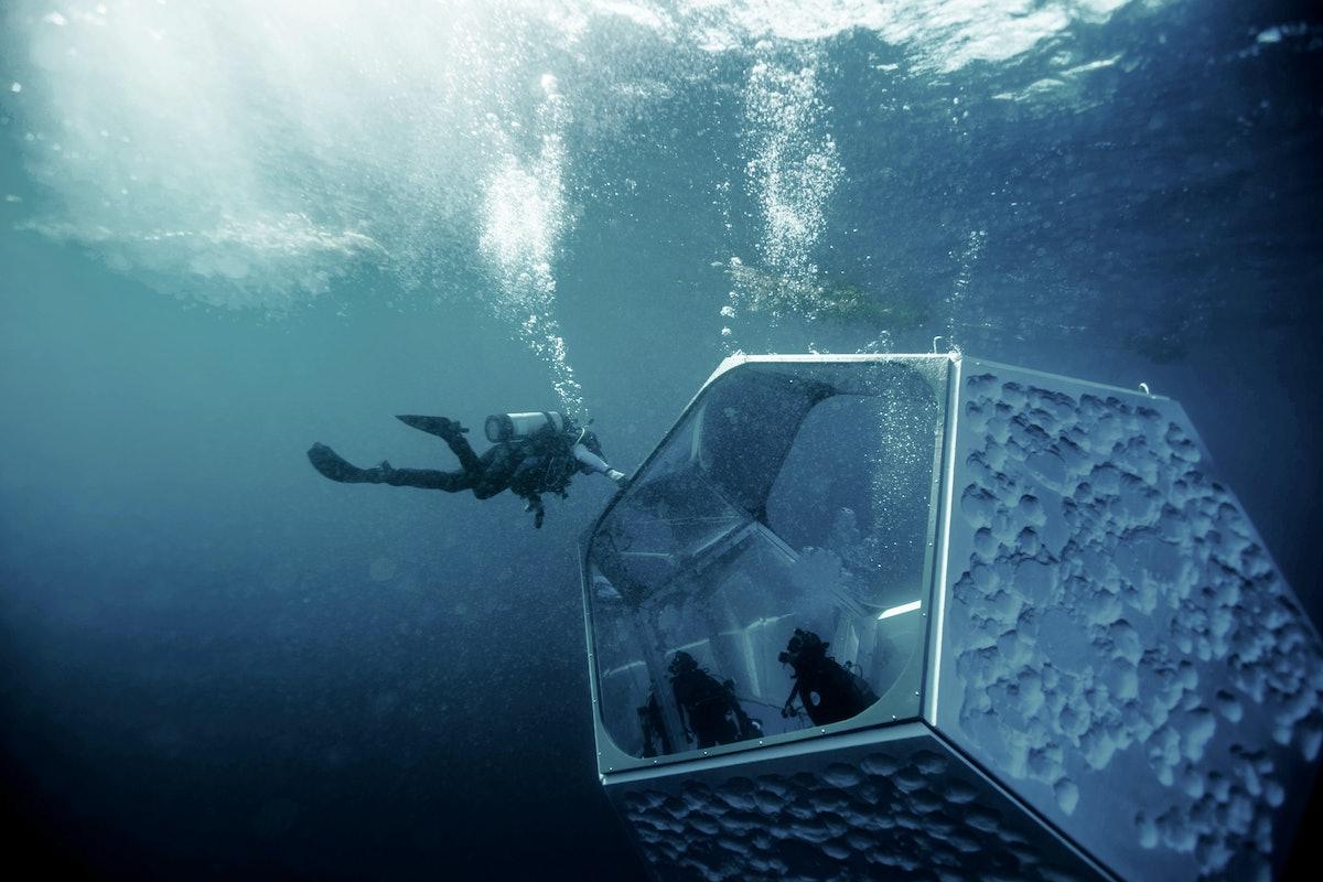 20161102_Doug-Aitken-Underwater-Pavilions-Catalina_Fallon_0863.jpg