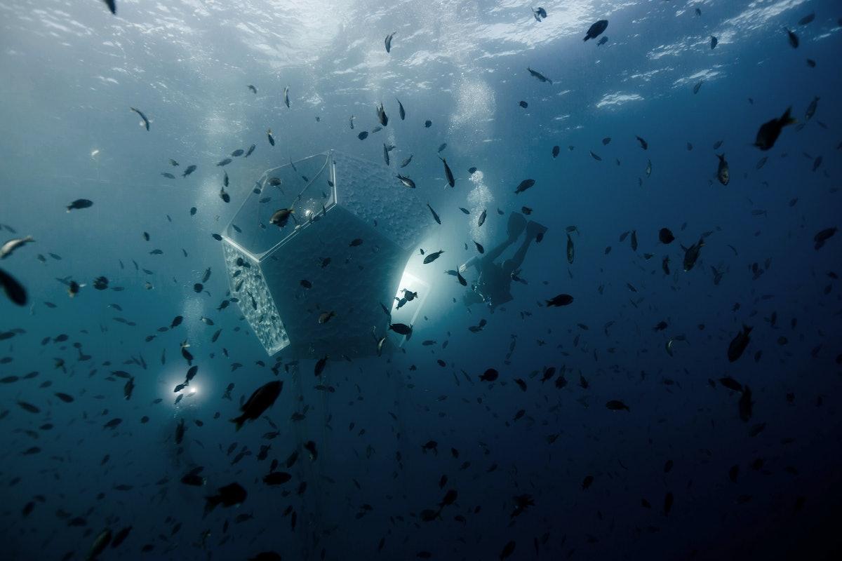 20161102_Doug-Aitken-Underwater-Pavilions-Catalina_Fallon_0633.jpg