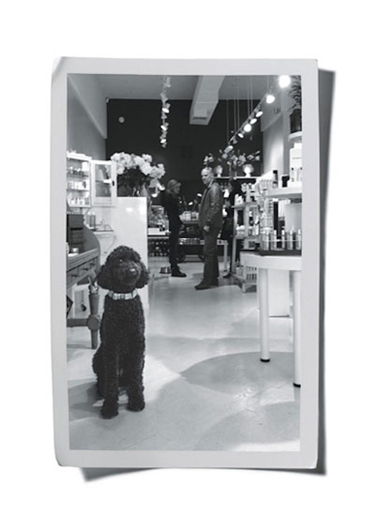 bess-janes-addiction-may-2012-01-v.jpg