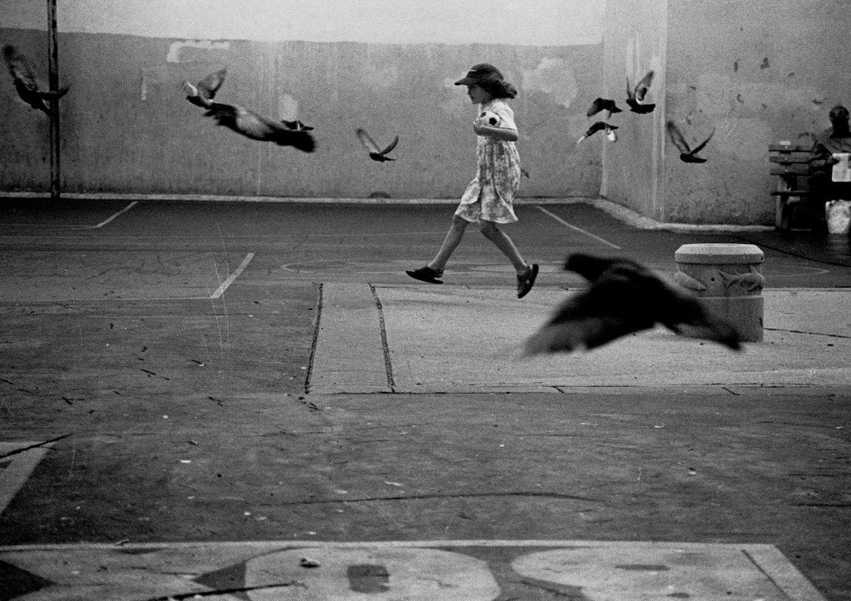 Erik-Madigan-Heck,-Girl-Running-with-Birds