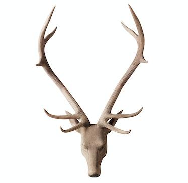 RH, Restoration Hardware stag head, $795, rh.com.