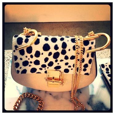 [Chloe](http://www.wmagazine.com/mood-board/filter?q=^Designer|Chloe|)'s animal print bag with gold ...