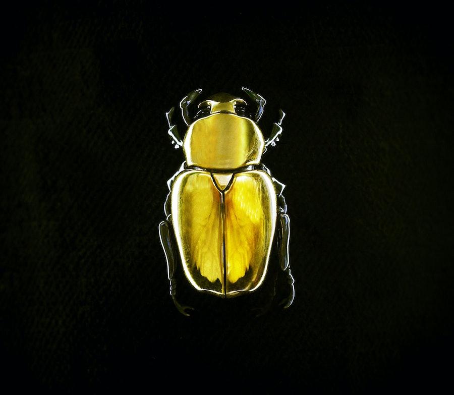 Shaun Leane Gold Beetle Brooch
