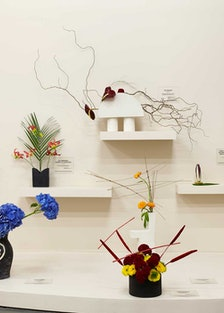 New-Museum-Camille-Henrot_NYC_Benoit-Pailley_1263