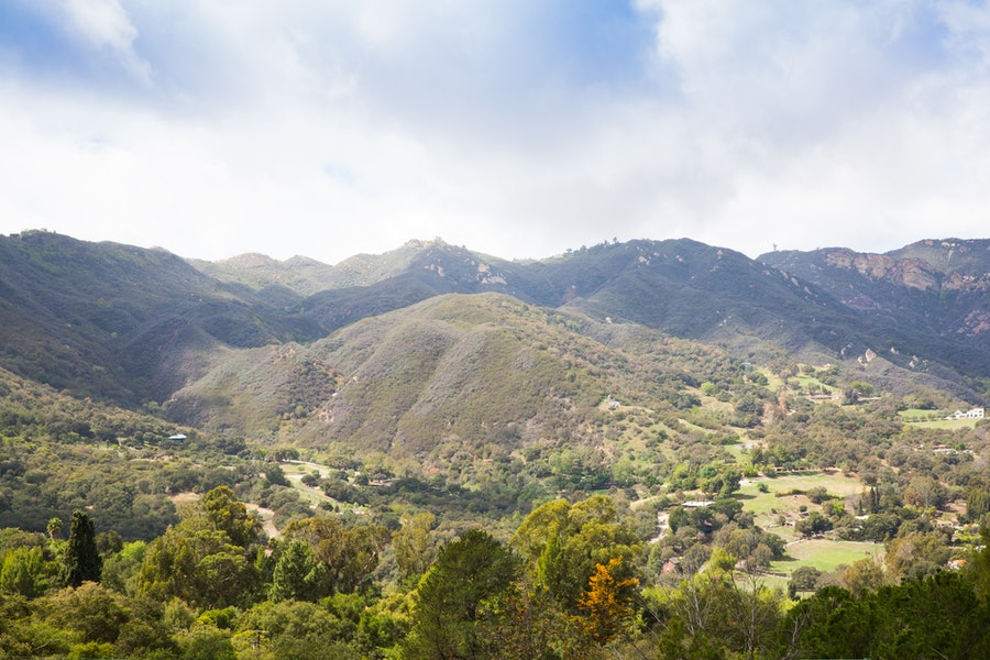 Alexander Payne Topanga California