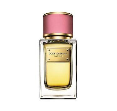 Dolce and Gabbana Velvet Rose