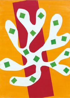Matisse's White Alga