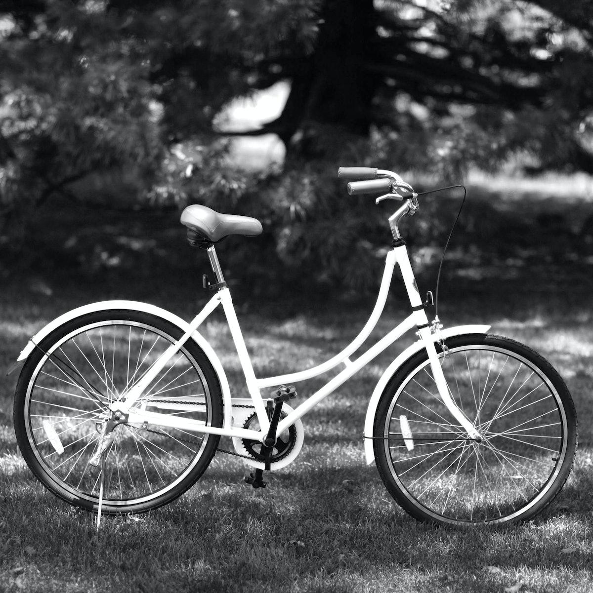 C. Wonder City Bike