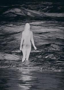 Anne Collier Negative (California)