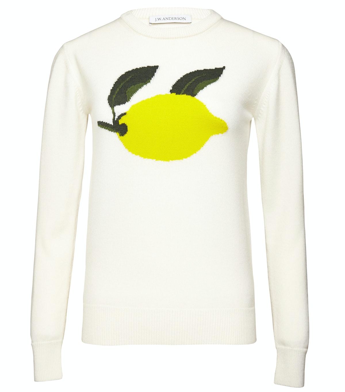 J. W. Anderson sweater