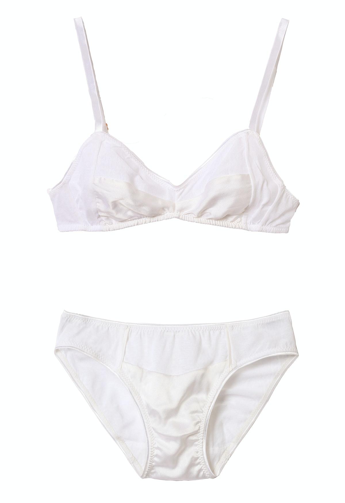 Araks bra and panty
