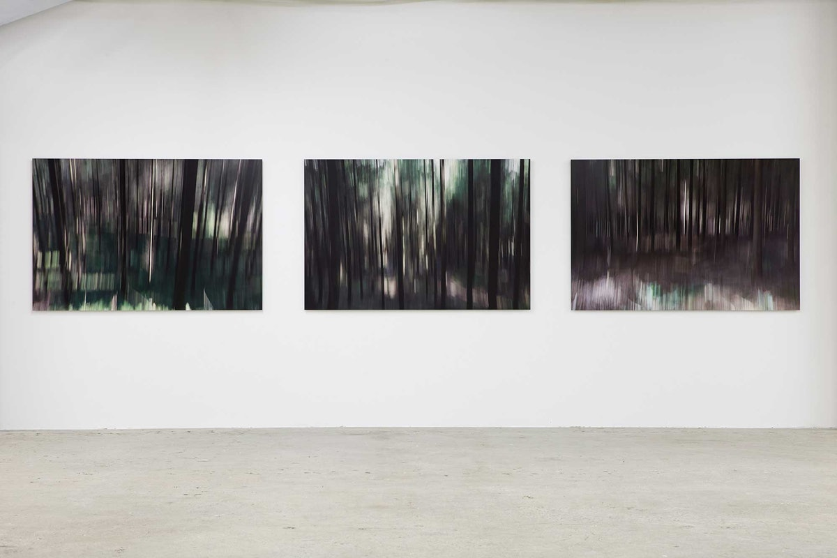 """Installation view of Lord Charles March's """"Wood Lands."""""""