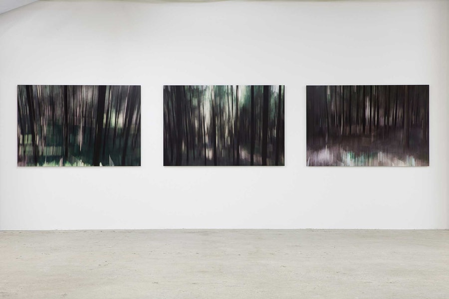 "Installation view of Lord Charles March's ""Wood Lands."""