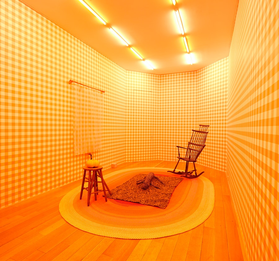 Installation view of Alex Da Corte, Die Hexe, 2015