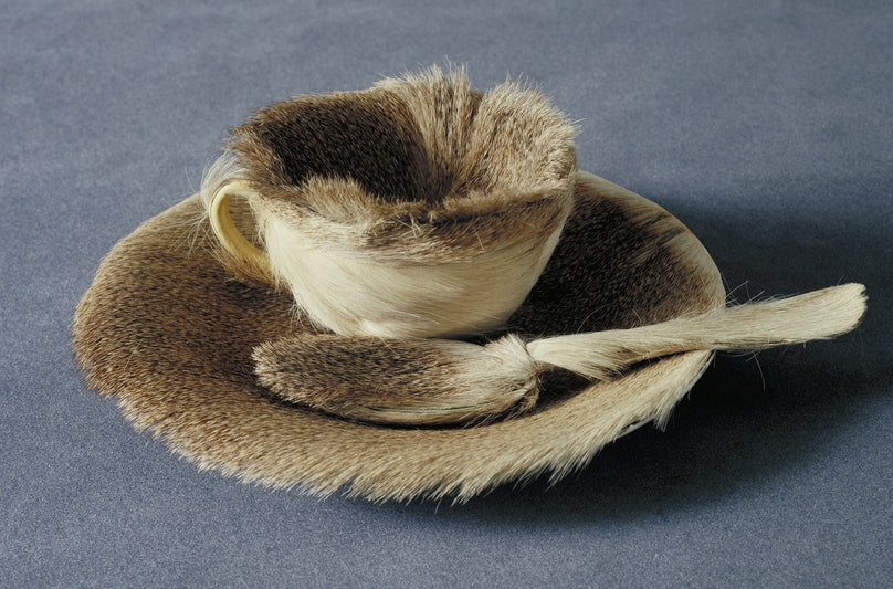 Meret Oppenheim's surrealist teacup set