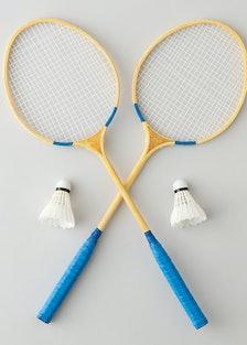 J. Franklin Field Day Badminton