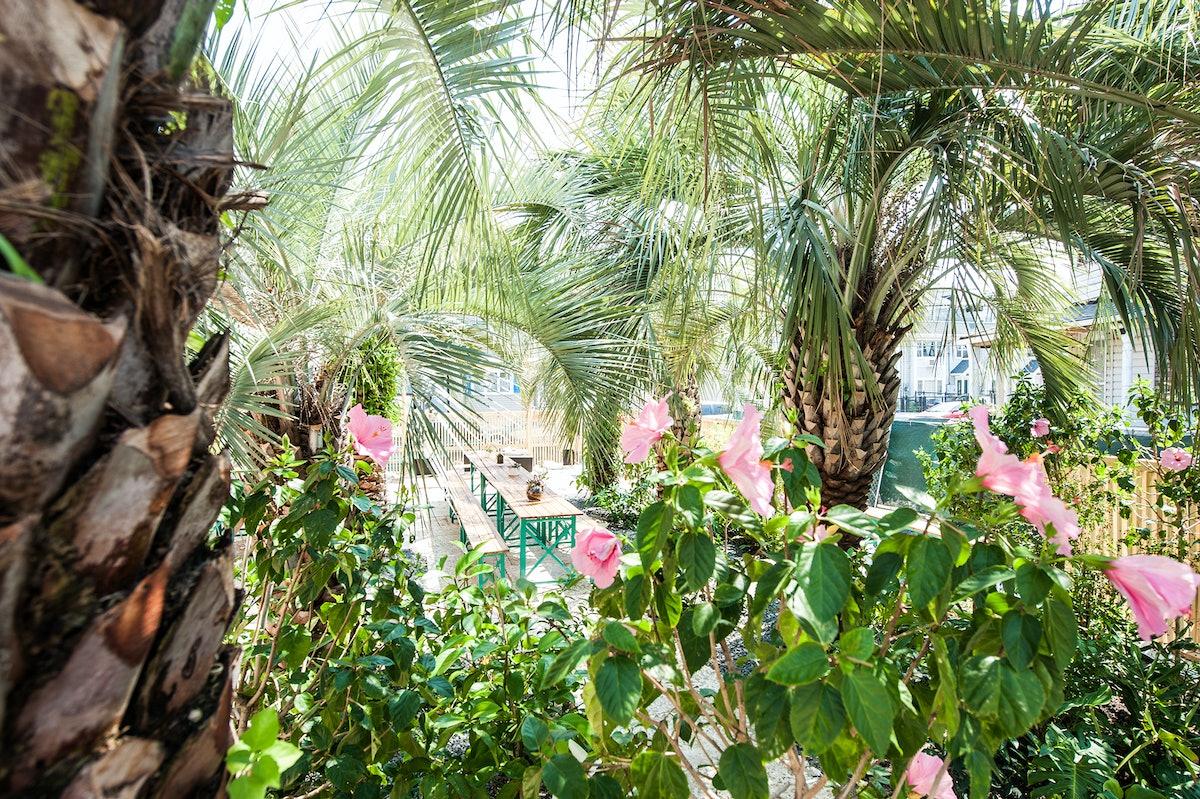 The Palms Rockaway