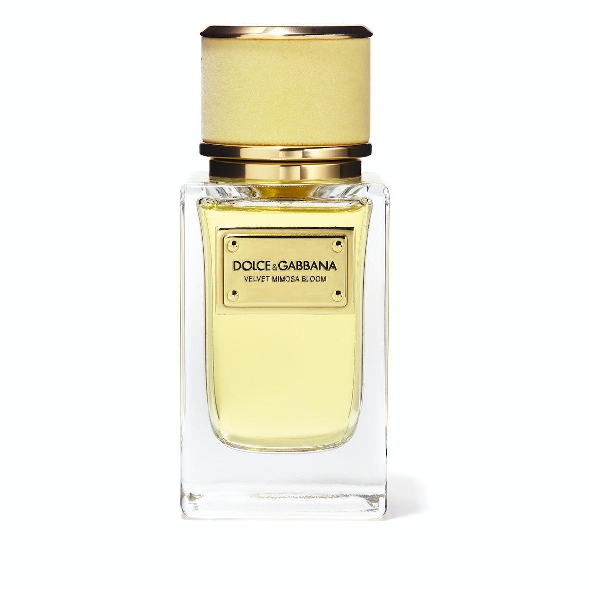 Dolce & Gabbana Velvet Mimosa Bloom eau de parfum