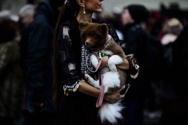 Le-21eme-Adam-Katz-Sinding-Paris-Mens-Fashion-Week-Fall-Winter-2016-2017_AKS5045