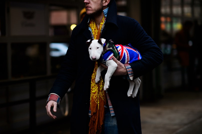 Le-21eme-Adam-Katz-Sinding-New-York-Fashion-Week-Mens-Fall-Winter-2016-2017_AKS0387