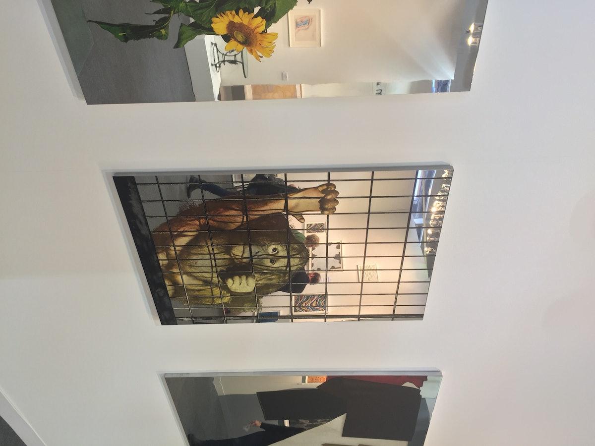 Scimmia in gabbia by Pistoletto.